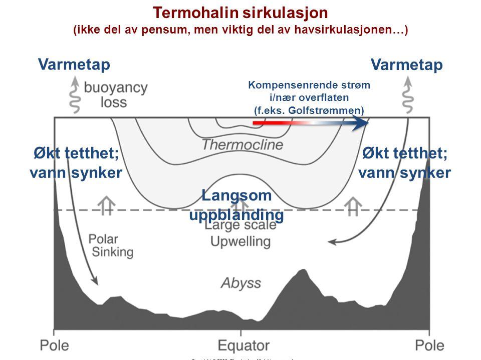 Termohalin sirkulasjon (ikke del av pensum, men viktig del av havsirkulasjonen…) Varmetap Økt tetthet; vann synker Økt tetthet; vann synker Økt tetthet; vann synker Økt tetthet; vann synker Langsom uppblanding Kompensenrende strøm i/nær overflaten (f.eks.
