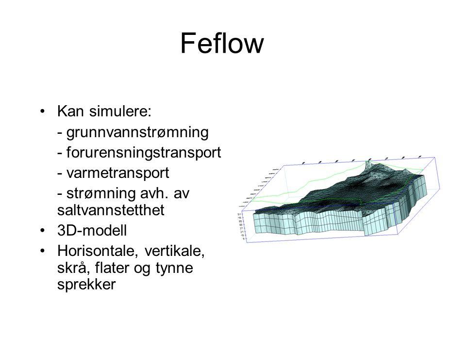 Feflow •Kan simulere: - grunnvannstrømning - forurensningstransport - varmetransport - strømning avh. av saltvannstetthet •3D-modell •Horisontale, ver