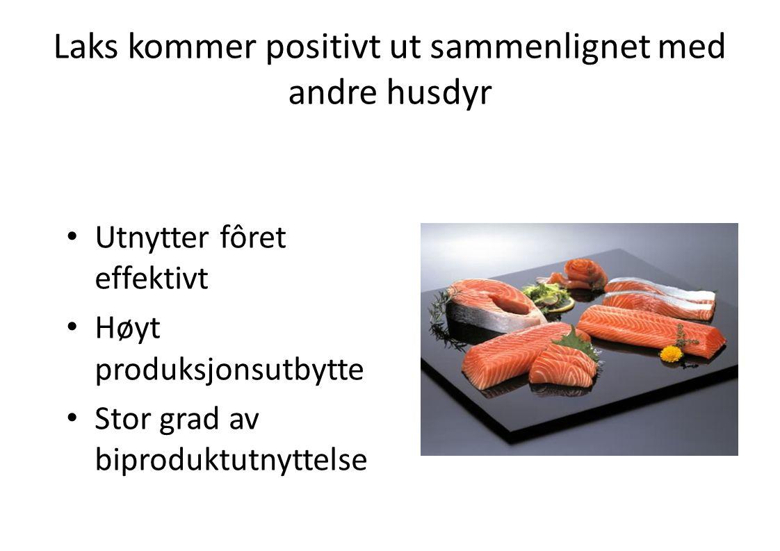 Laks kommer positivt ut sammenlignet med andre husdyr • Utnytter fôret effektivt • Høyt produksjonsutbytte • Stor grad av biproduktutnyttelse