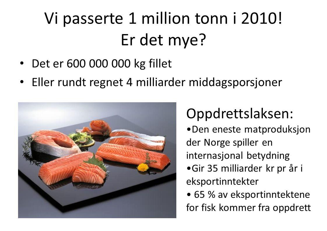 Vi passerte 1 million tonn i 2010! Er det mye? • Det er 600 000 000 kg fillet • Eller rundt regnet 4 milliarder middagsporsjoner Oppdrettslaksen: •Den