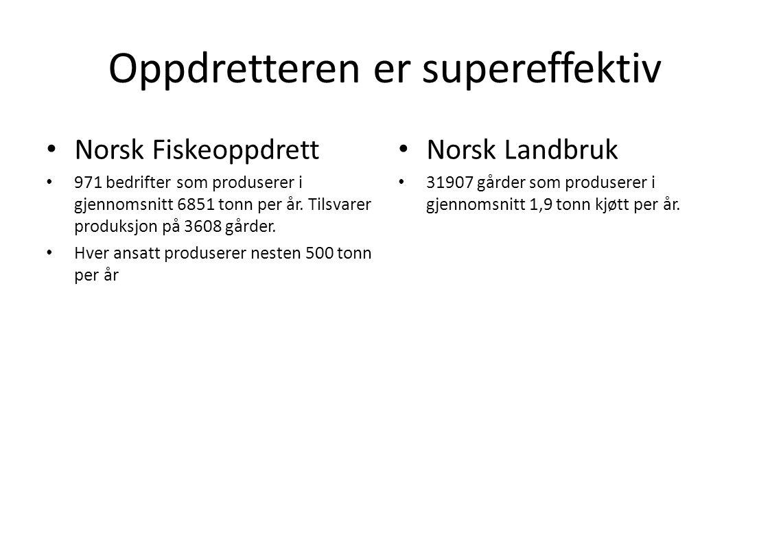 Oppdretteren er supereffektiv • Norsk Fiskeoppdrett • 971 bedrifter som produserer i gjennomsnitt 6851 tonn per år. Tilsvarer produksjon på 3608 gårde