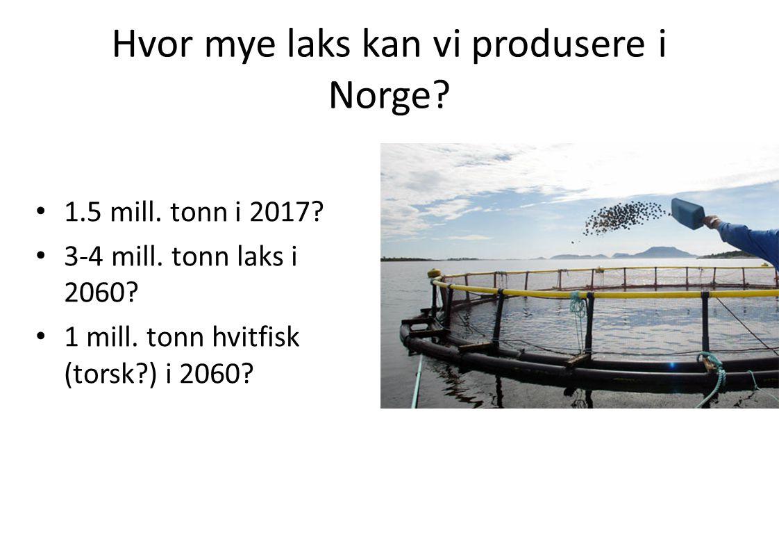 Hvor mye laks kan vi produsere i Norge? • 1.5 mill. tonn i 2017? • 3-4 mill. tonn laks i 2060? • 1 mill. tonn hvitfisk (torsk?) i 2060?