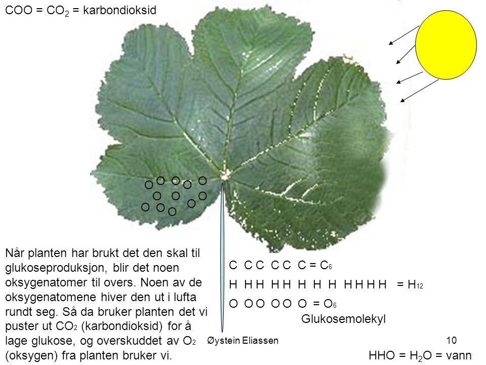 Øystein Eliassen10 COO = CO 2 = karbondioksid HHO = H 2 O = vann HH O C O O HH O C O O HH O C O O HH O C O O HH O C OO HH O C OO = C 6 = H 12 = O 6 Nå