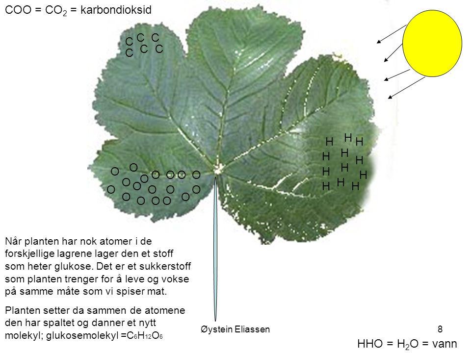 Øystein Eliassen8 COO = CO 2 = karbondioksid HHO = H 2 O = vann H H O C O O H H O C OO H H O C O O H H O C O O H H O C O O H H O C O O Når planten har nok atomer i de forskjellige lagrene lager den et stoff som heter glukose.