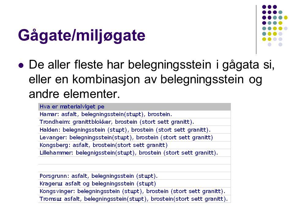 Gågate/miljøgate  De aller fleste har belegningsstein i gågata si, eller en kombinasjon av belegningsstein og andre elementer.