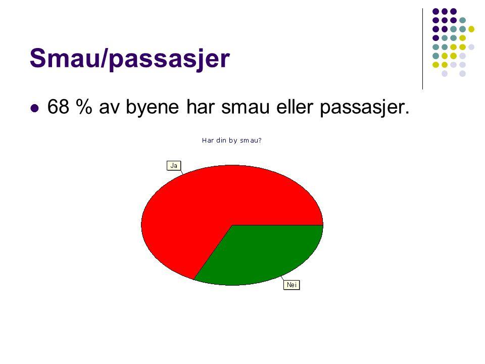 Smau/passasjer  68 % av byene har smau eller passasjer.