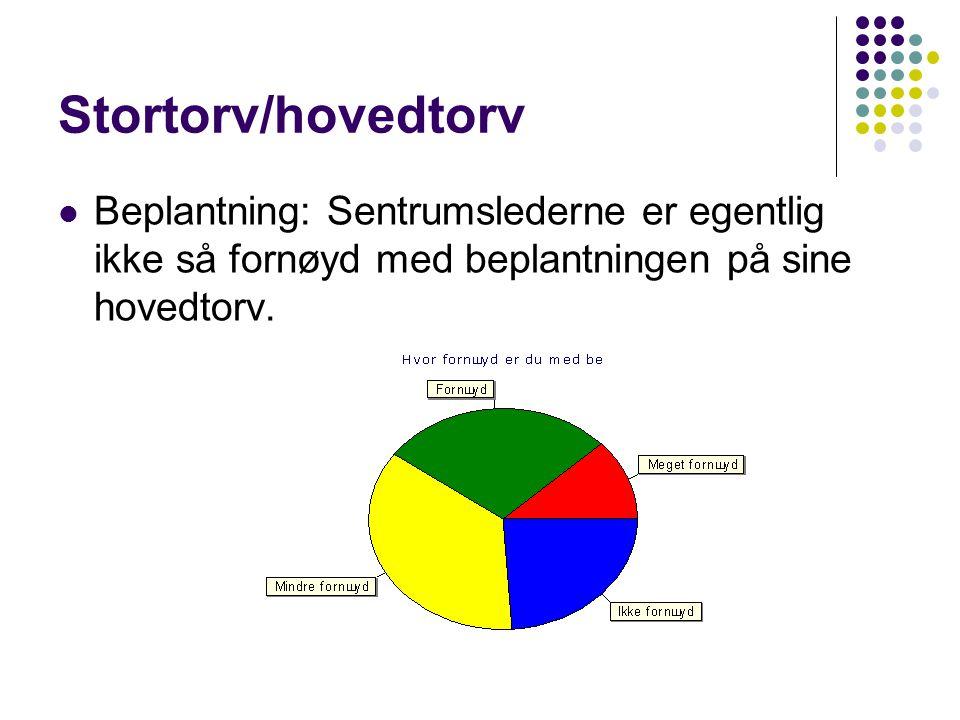 Stortorv/hovedtorv  Beplantning: Sentrumslederne er egentlig ikke så fornøyd med beplantningen på sine hovedtorv.