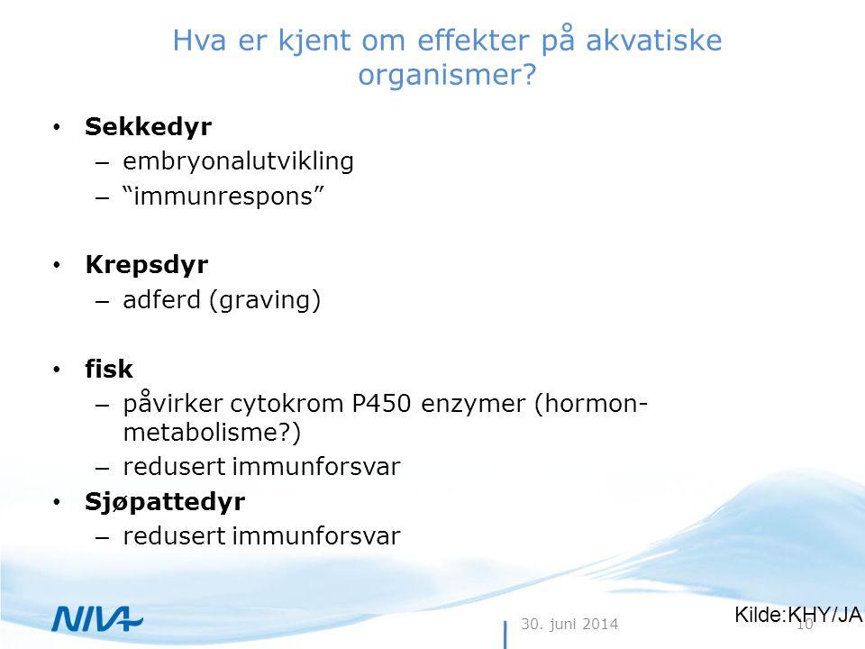 """30. juni 201410 Hva er kjent om effekter på akvatiske organismer? • Sekkedyr – embryonalutvikling – """"immunrespons"""" • Krepsdyr – adferd (graving) • fis"""
