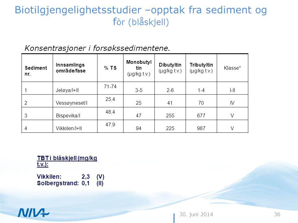30. juni 201436 Biotilgjengelighetsstudier –opptak fra sediment og f òr (blåskjell) Konsentrasjoner i forsøkssedimentene. Sediment nr. Innsamlings omr