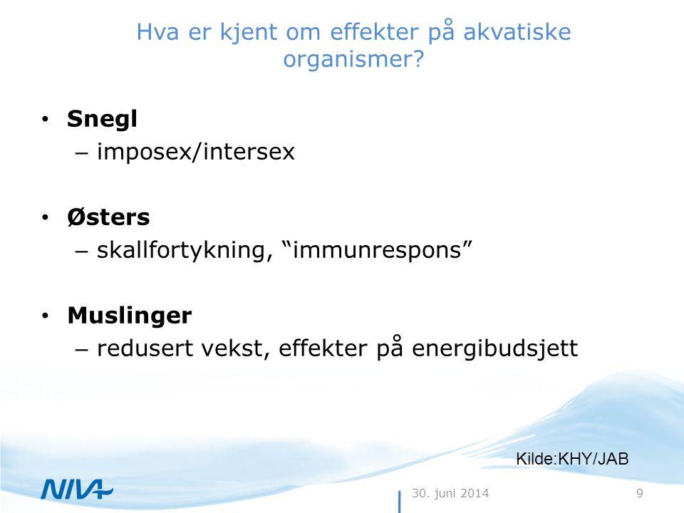 """30. juni 20149 Hva er kjent om effekter på akvatiske organismer? • Snegl – imposex/intersex • Østers – skallfortykning, """"immunrespons"""" • Muslinger – r"""