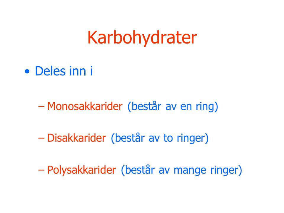 Karbohydrater •Deles inn i –Monosakkarider (består av en ring) –Disakkarider (består av to ringer) –Polysakkarider (består av mange ringer)