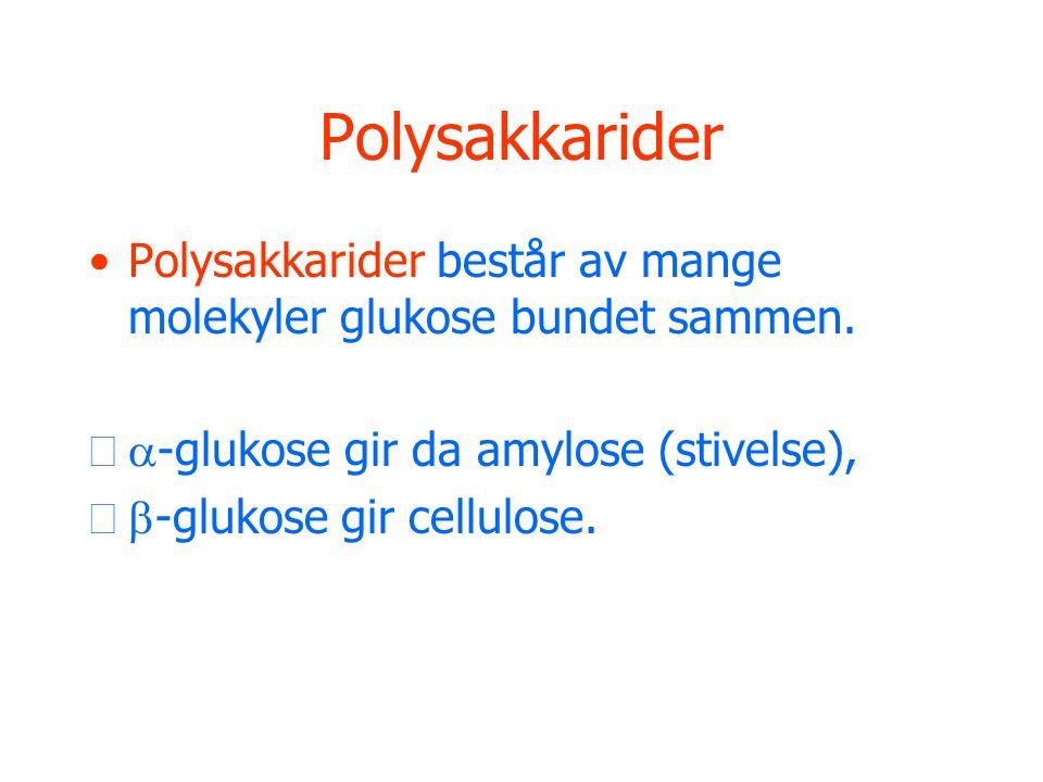 Polysakkarider •Polysakkarider består av mange molekyler glukose bundet sammen.  -glukose gir da amylose (stivelse),  -glukose gir cellulose.