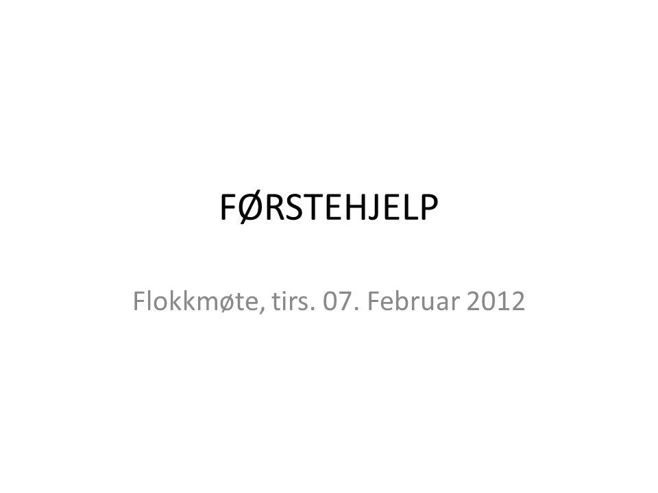 FØRSTEHJELP Flokkmøte, tirs. 07. Februar 2012