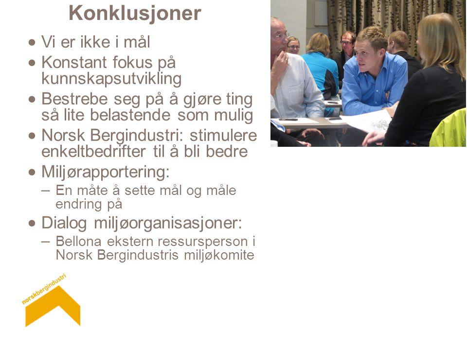 Konklusjoner  Vi er ikke i mål  Konstant fokus på kunnskapsutvikling  Bestrebe seg på å gjøre ting så lite belastende som mulig  Norsk Bergindustri: stimulere enkeltbedrifter til å bli bedre  Miljørapportering: – En måte å sette mål og måle endring på  Dialog miljøorganisasjoner: – Bellona ekstern ressursperson i Norsk Bergindustris miljøkomite