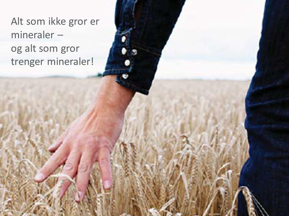 Alt som ikke gror er mineraler – og alt som gror trenger mineraler!