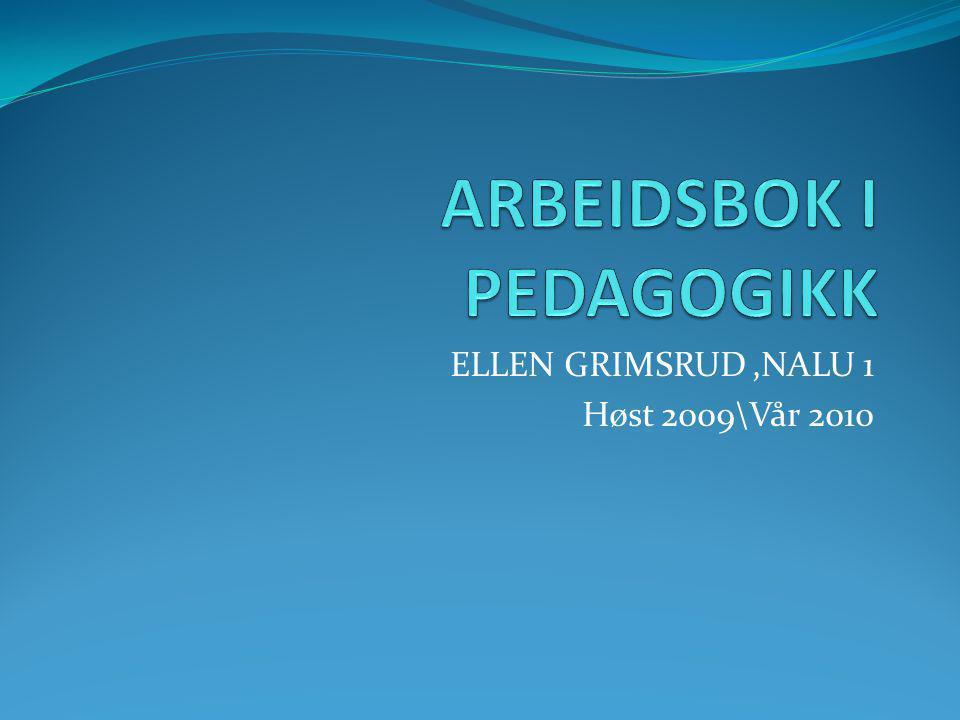 ELLEN GRIMSRUD,NALU 1 Høst 2009\Vår 2010