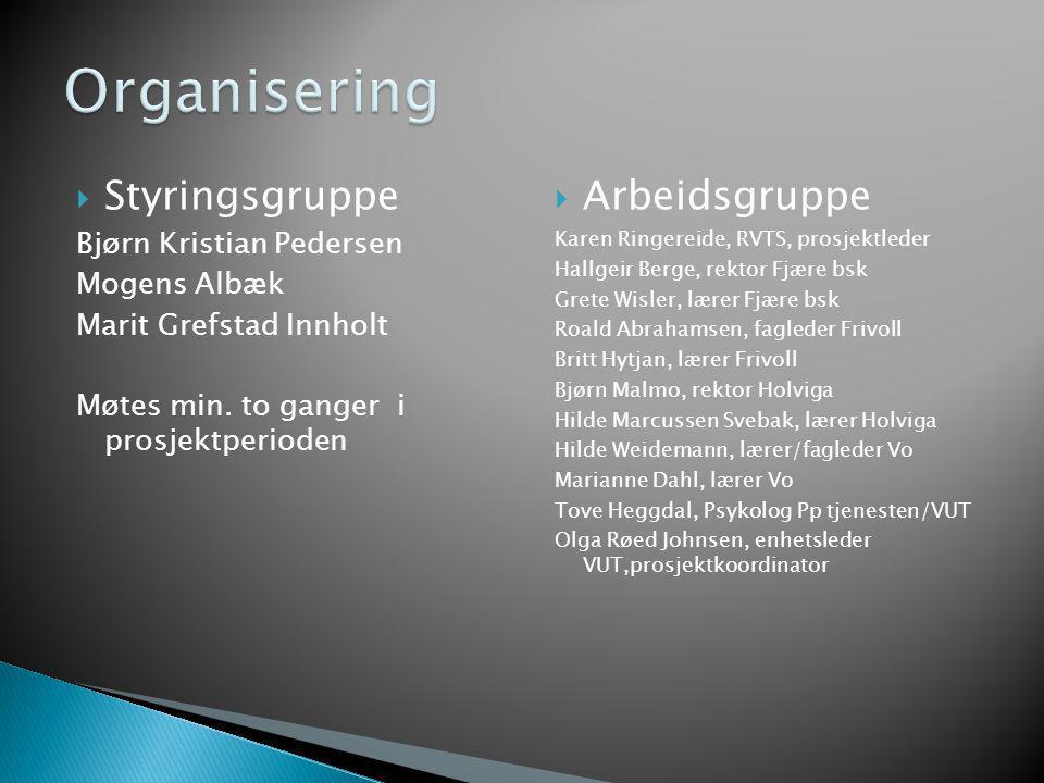  Styringsgruppe Bjørn Kristian Pedersen Mogens Albæk Marit Grefstad Innholt Møtes min. to ganger i prosjektperioden  Arbeidsgruppe Karen Ringereide,