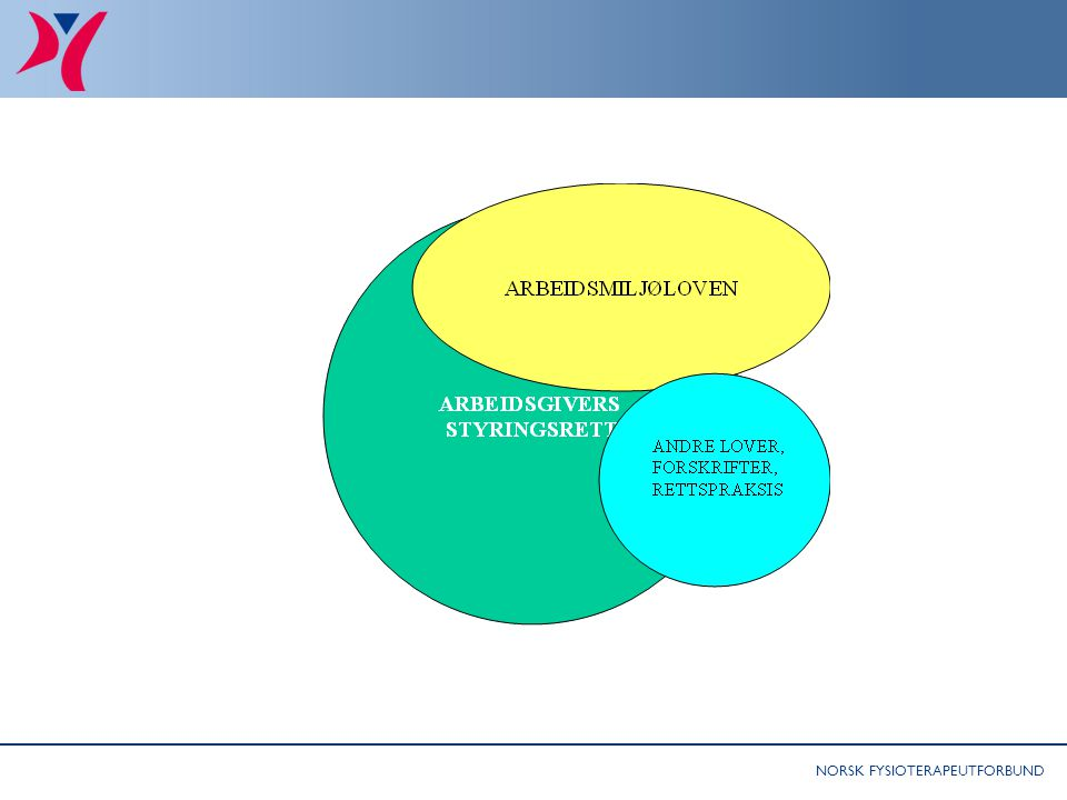 NORSK FYSIOTERAPEUTFORBUND Begrensninger i styringsretten