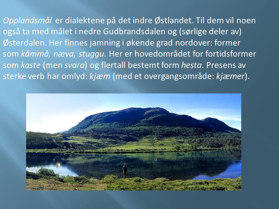 Opplandsmål er dialektene på det indre Østlandet. Til dem vil noen også ta med målet i nedre Gudbrandsdalen og (sørlige deler av) Østerdalen. Her finn