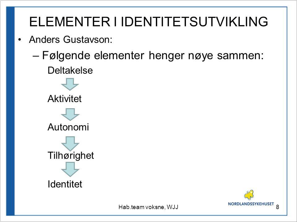 ELEMENTER I IDENTITETSUTVIKLING Anders Gustavson: –Følgende elementer henger nøye sammen: Deltakelse Aktivitet Autonomi Tilhørighet Identitet 8Hab.tea