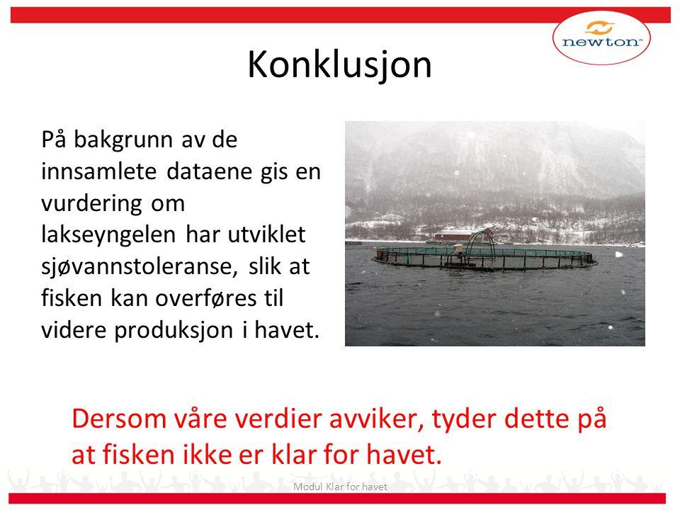 Konklusjon På bakgrunn av de innsamlete dataene gis en vurdering om lakseyngelen har utviklet sjøvannstoleranse, slik at fisken kan overføres til vide