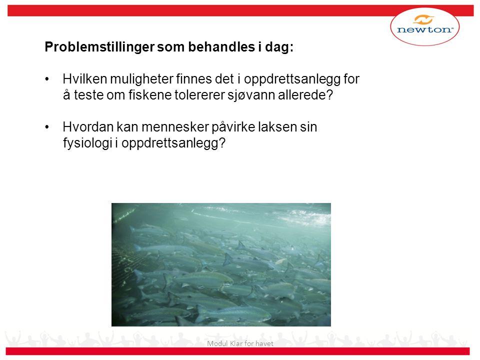 Modul Klar for havet Problemstillinger som behandles i dag: Hvilken muligheter finnes det i oppdrettsanlegg for å teste om fiskene tolererer sjøvann a