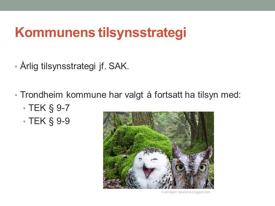Kommunens tilsynsstrategi Årlig tilsynsstrategi jf. SAK. Trondheim kommune har valgt å fortsatt ha tilsyn med: TEK § 9-7 TEK § 9-9 Illustrasjon: lekes