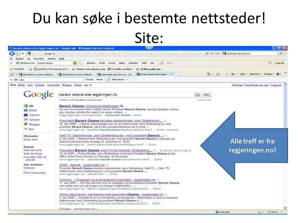 Du kan søke i bestemte nettsteder! Site: Alle treff er fra regjeringen.no!