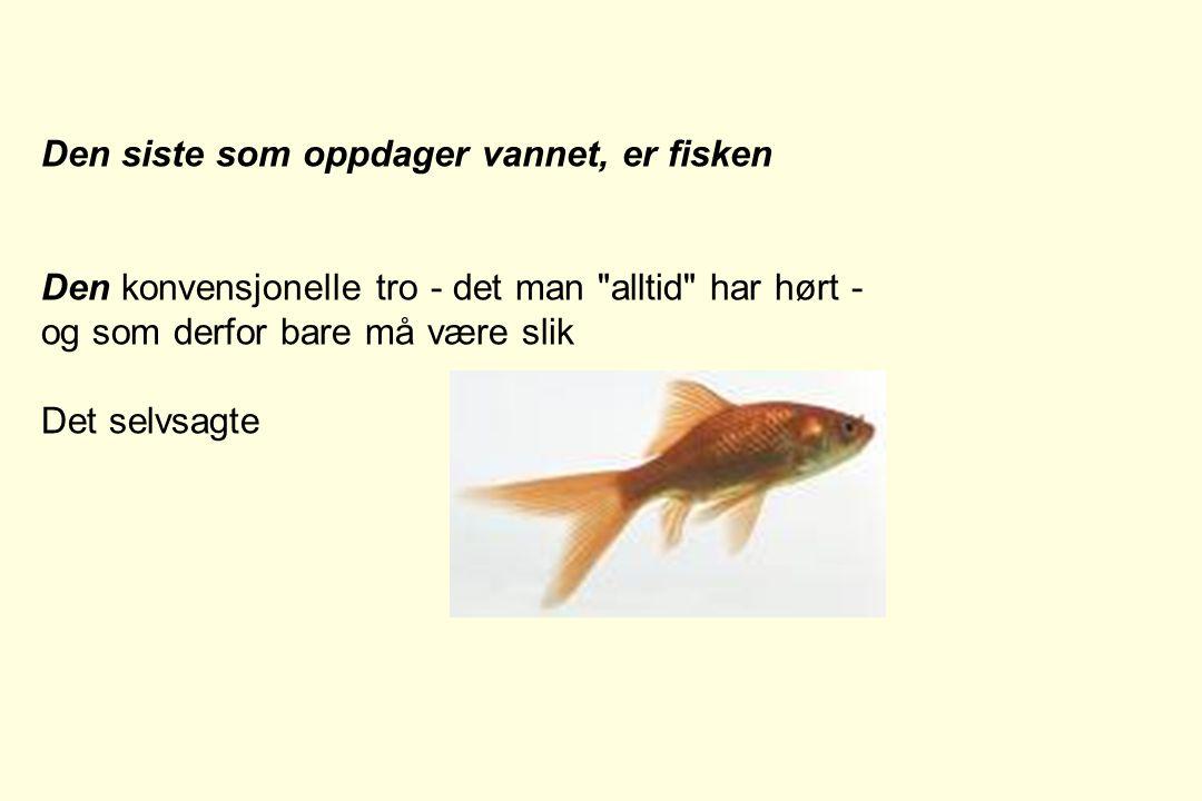 Den siste som oppdager vannet, er fisken Den konvensjonelle tro - det man