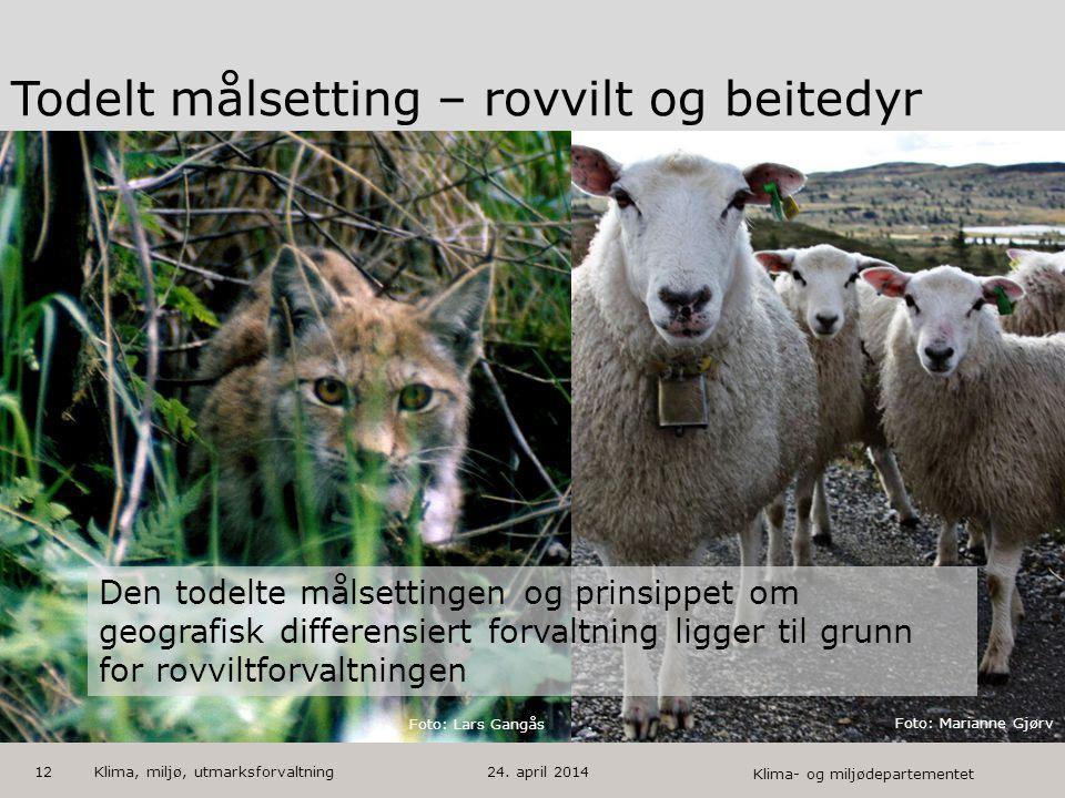 Klima- og miljødepartementet Norsk mal: Startside med bilde HUSK: krediter fotograf om det brukes bilde Todelt målsetting – rovvilt og beitedyr 12 Fot
