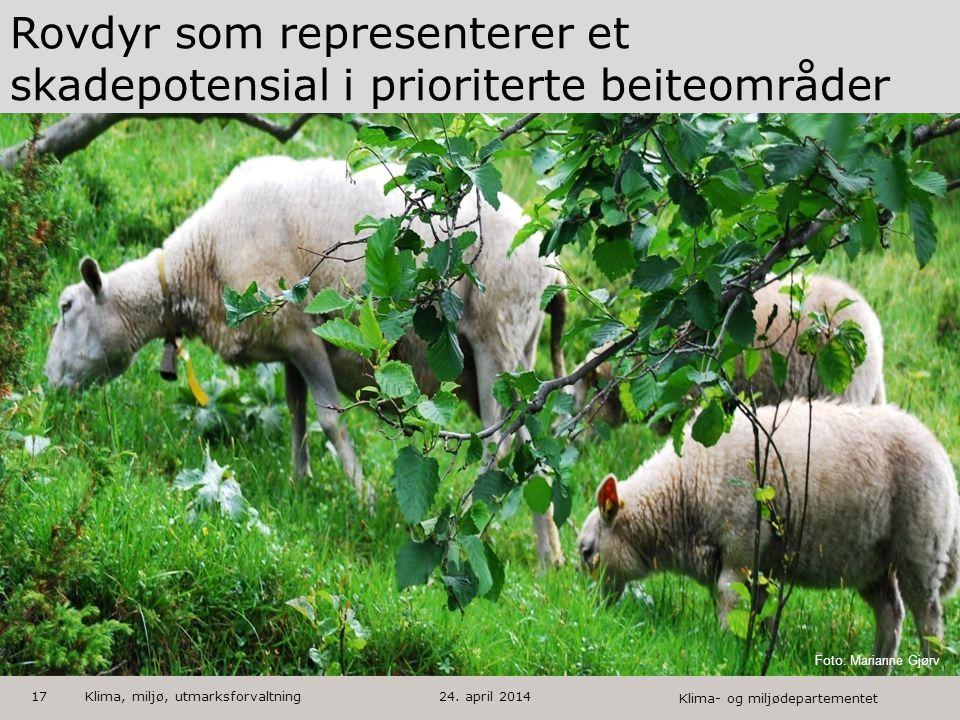 Klima- og miljødepartementet Norsk mal: Tekst med kulepunkter - 1 vertikalt bilde HUSK: krediter fotograf om det brukes bilde Rovdyr som representerer