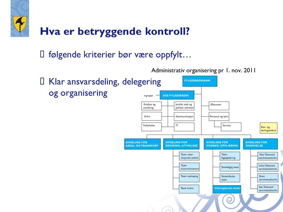 Hva er betryggende kontroll?  følgende kriterier bør være oppfylt…  Klar ansvarsdeling, delegering og organisering