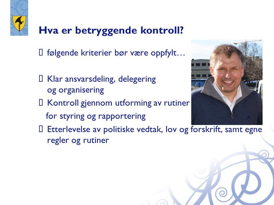 Hva er betryggende kontroll?  følgende kriterier bør være oppfylt…  Klar ansvarsdeling, delegering og organisering  Kontroll gjennom utforming av r