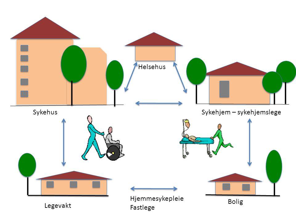 Bolig Sykehjem – sykehjemslege Legevakt Sykehus Hjemmesykepleie Fastlege Helsehus