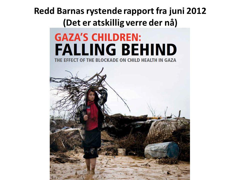 Redd Barnas rystende rapport fra juni 2012 (Det er atskillig verre der nå)