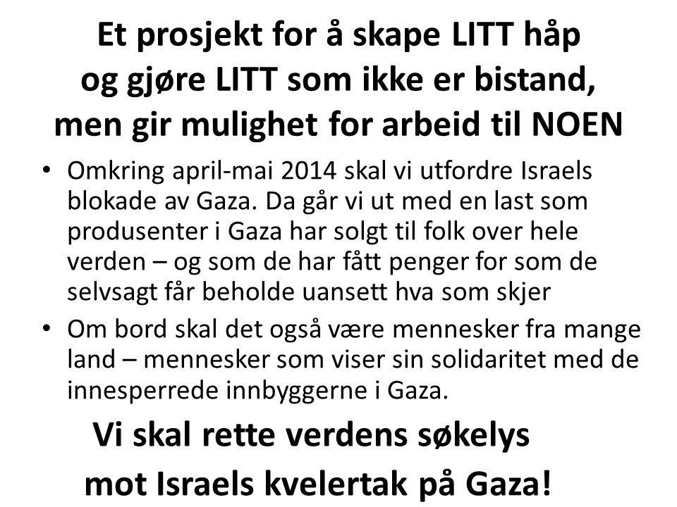 Et prosjekt for å skape LITT håp og gjøre LITT som ikke er bistand, men gir mulighet for arbeid til NOEN Omkring april-mai 2014 skal vi utfordre Israels blokade av Gaza.