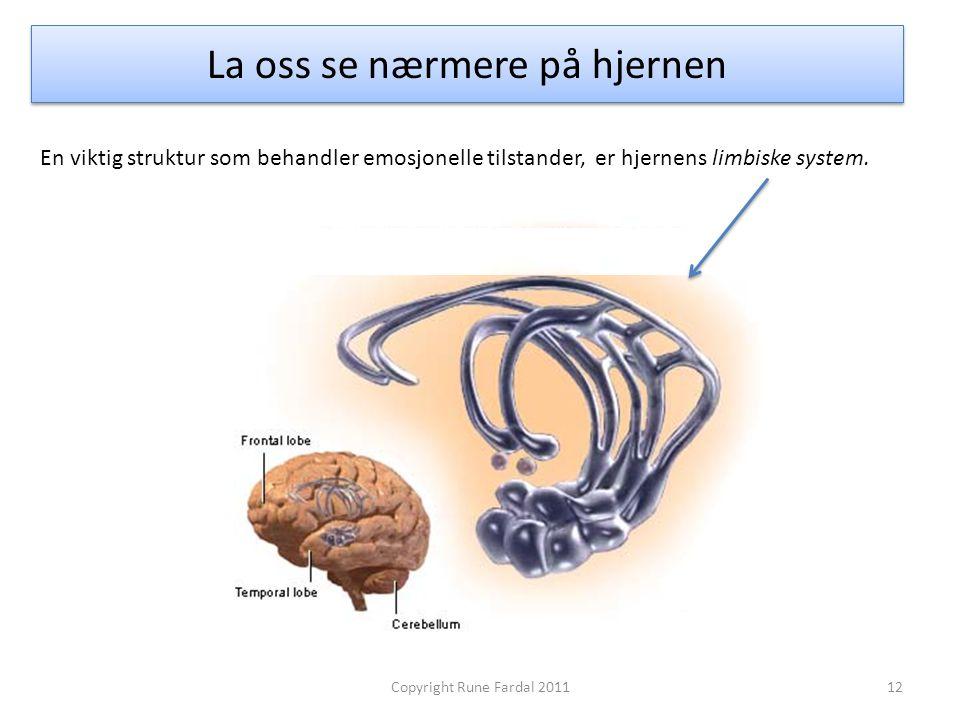 La oss se nærmere på hjernen 12Copyright Rune Fardal 2011 En viktig struktur som behandler emosjonelle tilstander, er hjernens limbiske system.