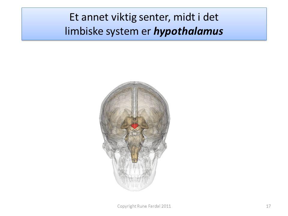 Et annet viktig senter, midt i det limbiske system er hypothalamus 17Copyright Rune Fardal 2011