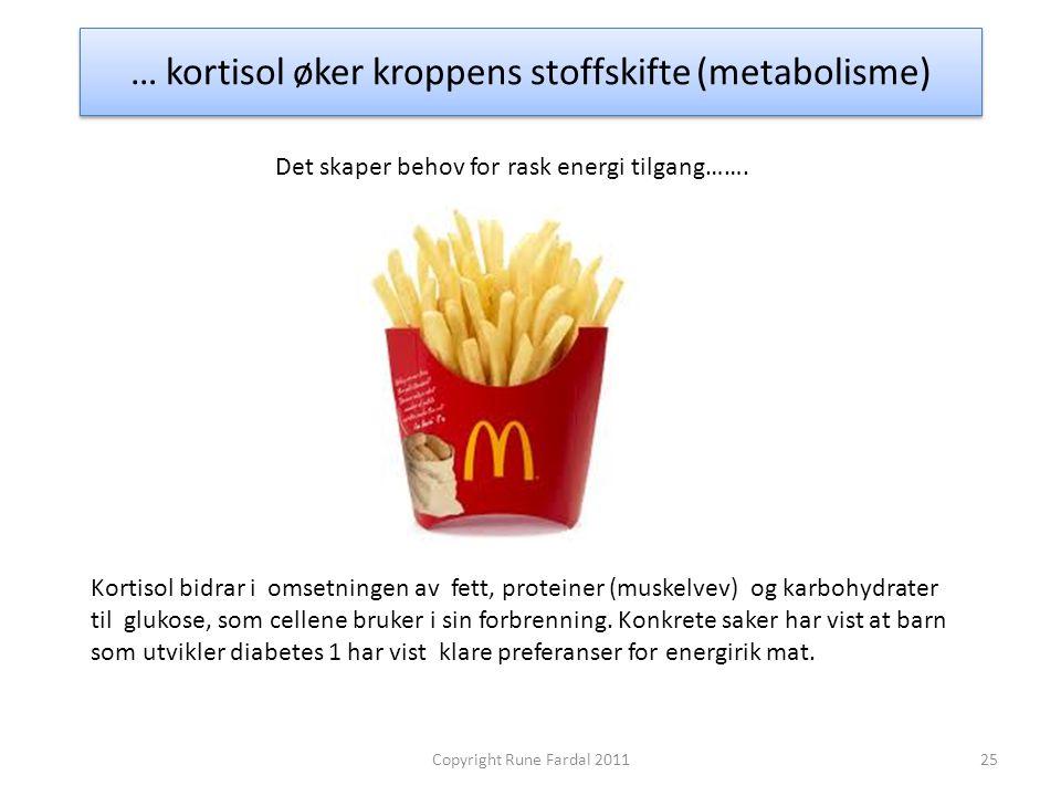 … kortisol øker kroppens stoffskifte (metabolisme) 25Copyright Rune Fardal 2011 Kortisol bidrar i omsetningen av fett, proteiner (muskelvev) og karboh