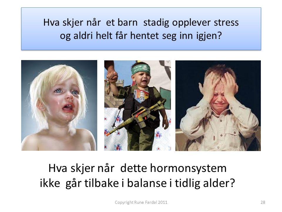 Hva skjer når et barn stadig opplever stress og aldri helt får hentet seg inn igjen? Hva skjer når dette hormonsystem ikke går tilbake i balanse i tid