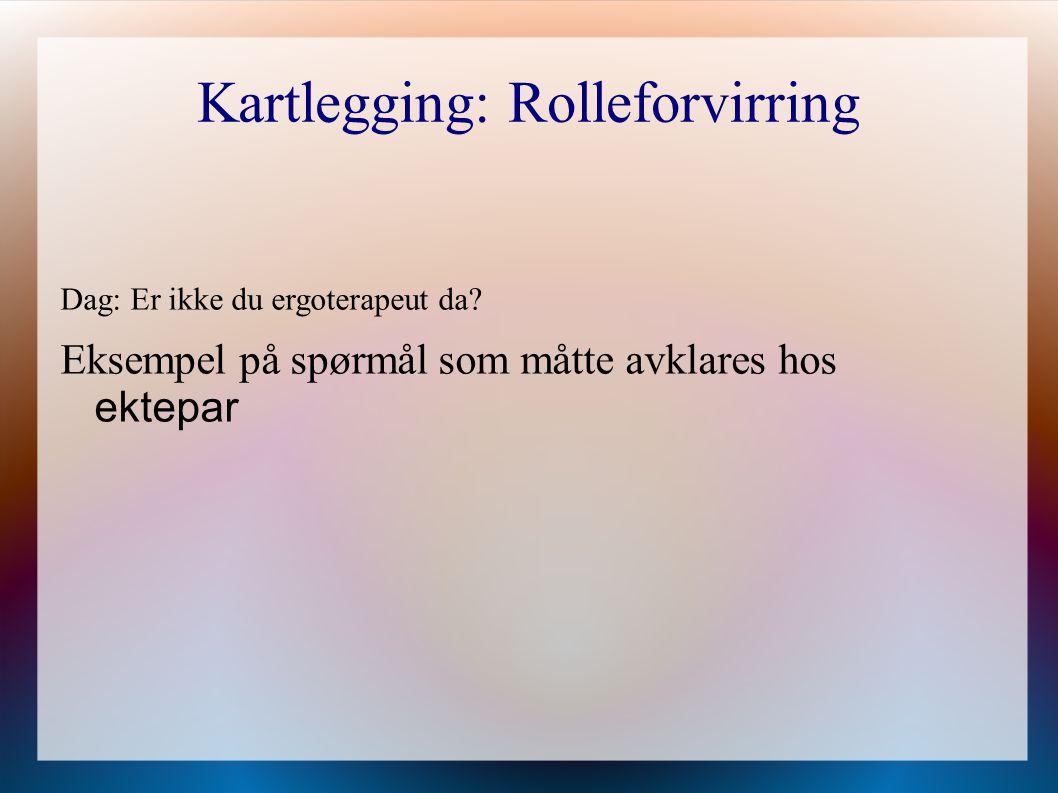 Kartlegging: Rolleforvirring Dag: Er ikke du ergoterapeut da? Eksempel på spørmål som måtte avklares hos ektepar