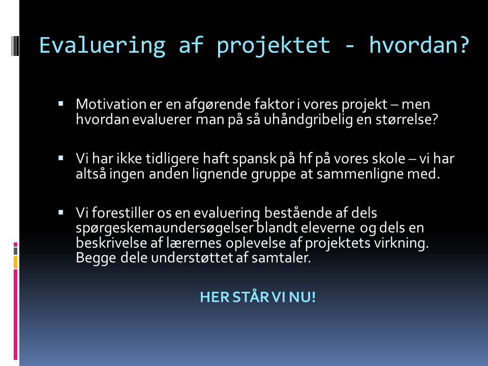 Evaluering af projektet - hvordan?  Motivation er en afgørende faktor i vores projekt – men hvordan evaluerer man på så uhåndgribelig en størrelse? 