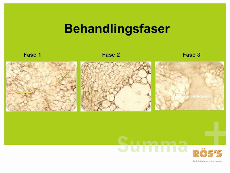 Fase 1Fase 3Fase 2 Behandlingsfaser