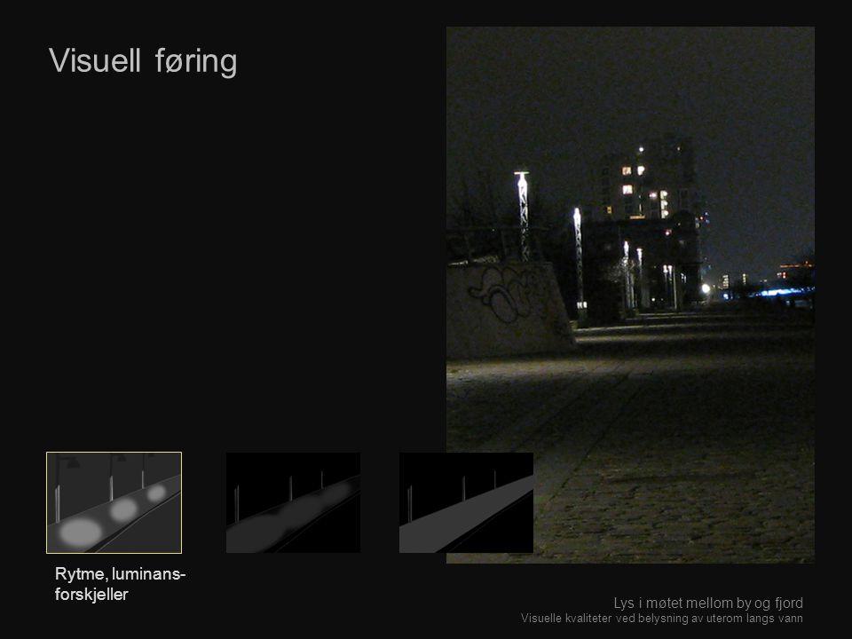 Visuell føring Rytme, luminans- forskjeller Lys i møtet mellom by og fjord Visuelle kvaliteter ved belysning av uterom langs vann