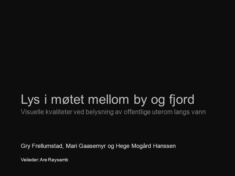 Lys i møtet mellom by og fjord Visuelle kvaliteter ved belysning av offentlige uterom langs vann Gry Frellumstad, Mari Gaasemyr og Hege Mogård Hanssen