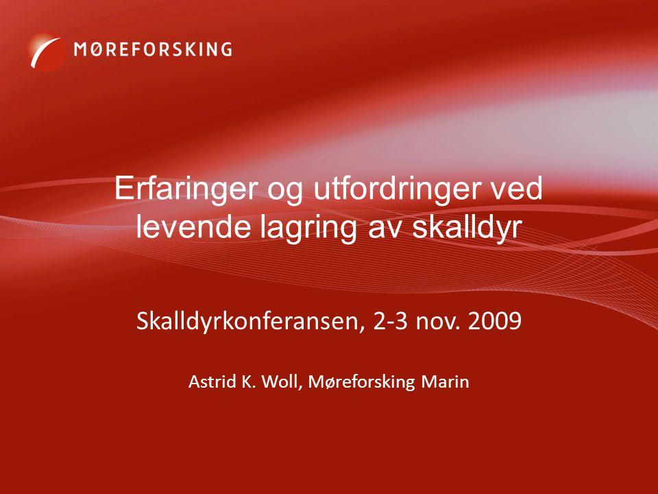Erfaringer og utfordringer ved levende lagring av skalldyr Skalldyrkonferansen, 2-3 nov. 2009 Astrid K. Woll, Møreforsking Marin