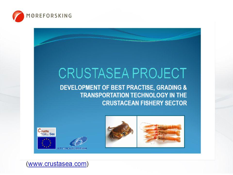 Crustasea (www.crustasea.com)www.crustasea.com