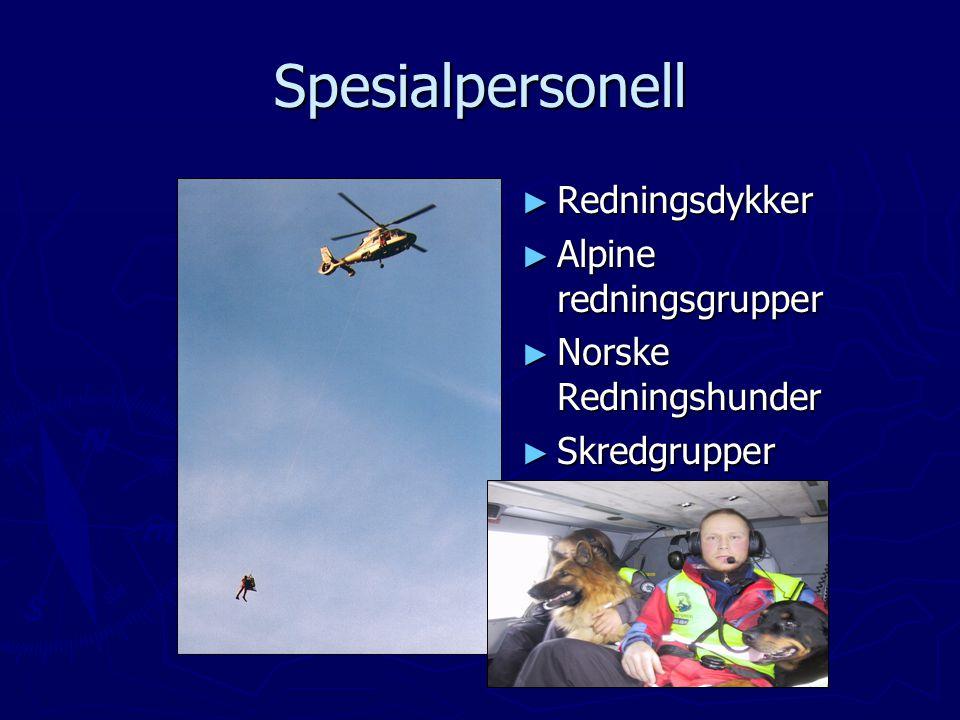 Spesialpersonell ► Redningsdykker ► Alpine redningsgrupper ► Norske Redningshunder ► Skredgrupper