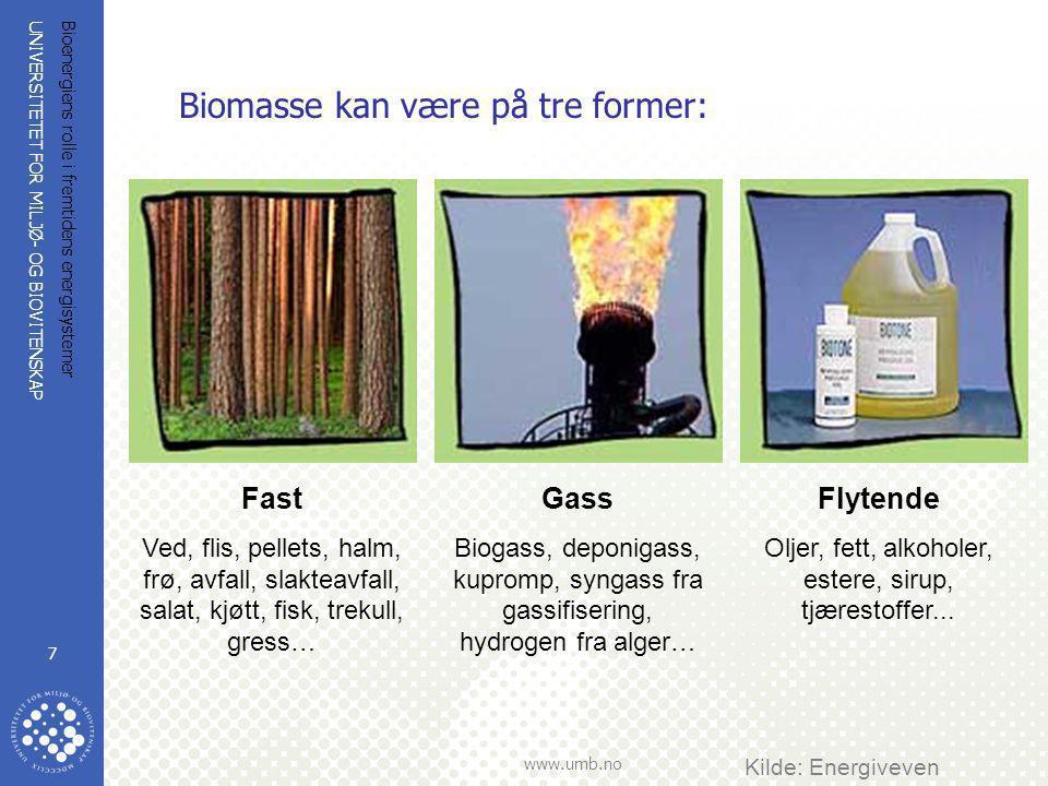 UNIVERSITETET FOR MILJØ- OG BIOVITENSKAP www.umb.no Bioenergiens rolle i fremtidens energisystemer 7 Biomasse kan være på tre former: Kilde: Energivev