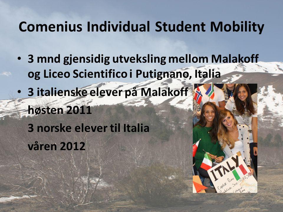 Comenius Individual Student Mobility • 3 mnd gjensidig utveksling mellom Malakoff og Liceo Scientifico i Putignano, Italia • 3 italienske elever på Ma